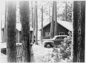 Researcher's vehicle parked between the trees at Trout Lake Station, ca. 1930